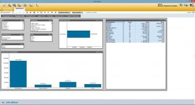 Screenshot: pds BI-Tool