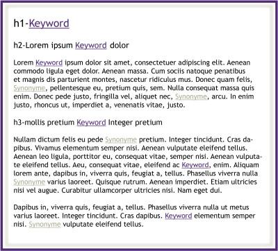 Keywords und Synonyme in Überschriften - Keyword-Dichte